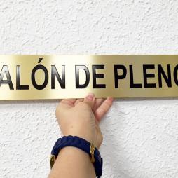 SALON DE PLENOS